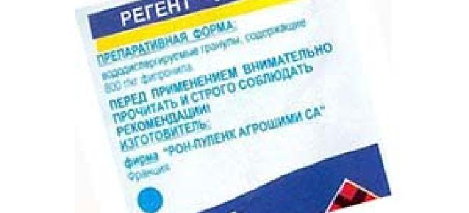 Обзор средств «Регент» от тараканов