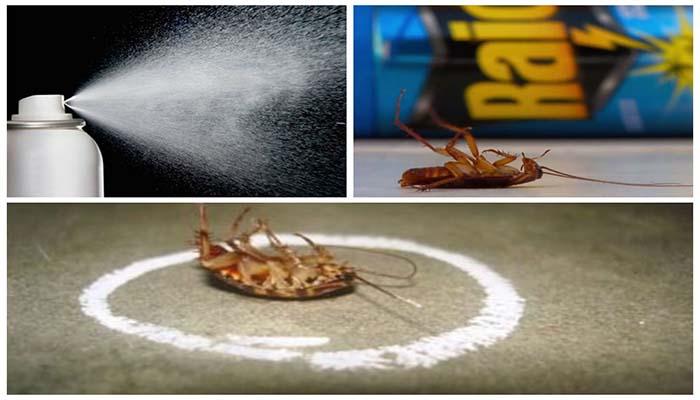Аэрозоль против паразитов
