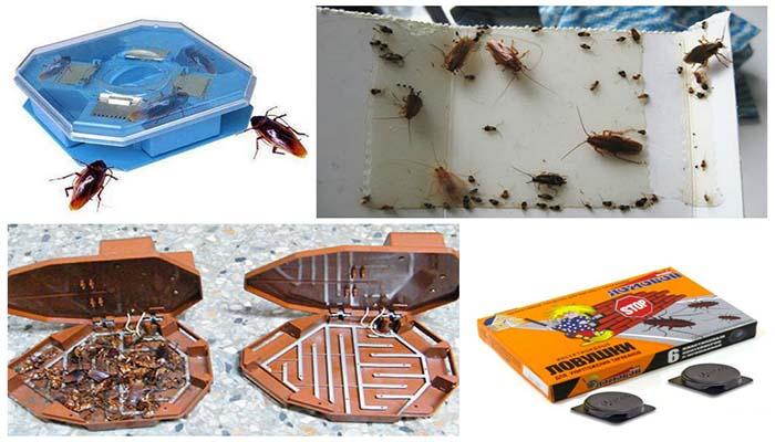 Различные ловушки от тараканов