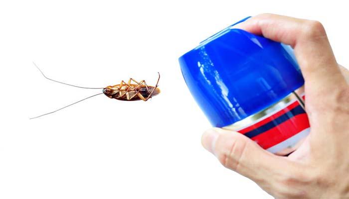 Аэрозоль против насекомых