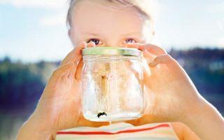 Что использовать для лечения укусов насекомых у детей