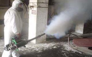 Особенности уничтожения тараканов туманом